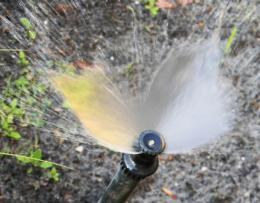 ButterflyWaterspray
