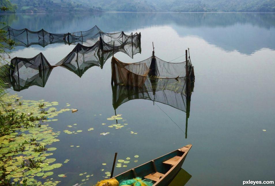 Nets in Water