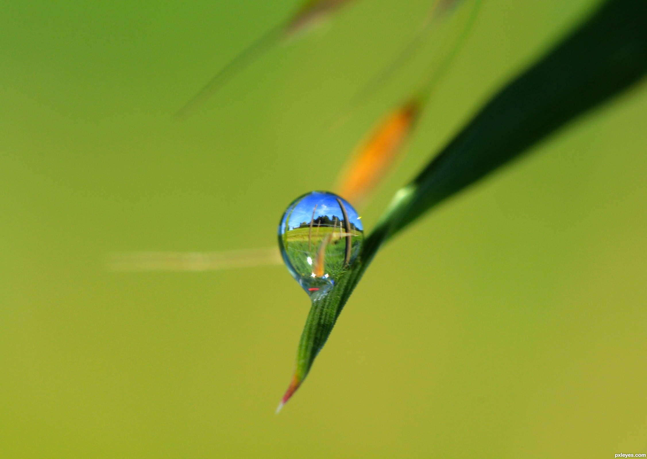 water droplet photography reflected - photo #45