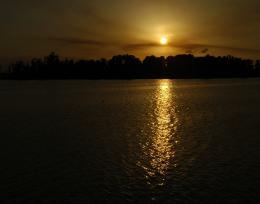 Sundowngold