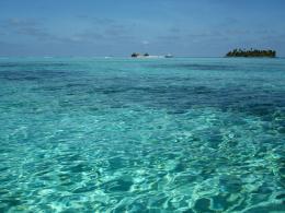 Caribbean wonder