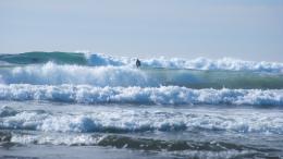 WaveWalker