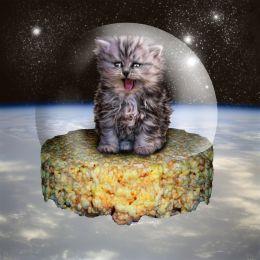 Kitten on a Rice Krispie Treat in Space