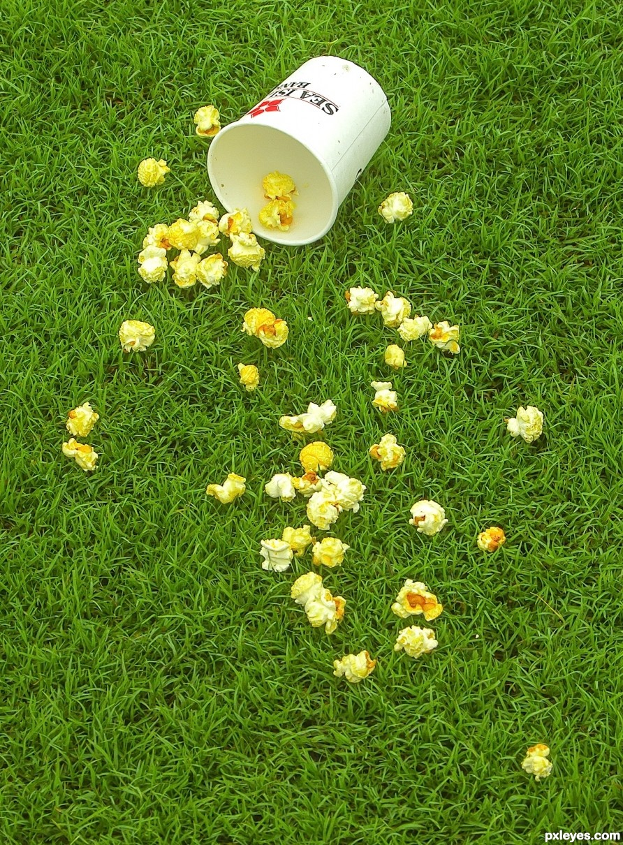 Popcorn in the park on the grass