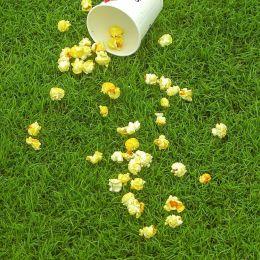 Popcornintheparkonthegrass