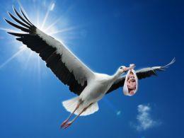 Storkie