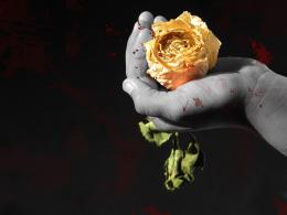 Bloody rose Picture