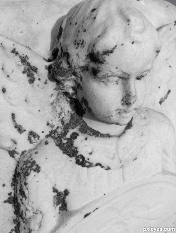 Whitened Memories