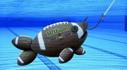On the Hook Football Fish