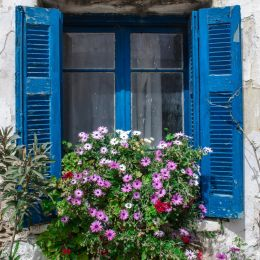 FloralWindow