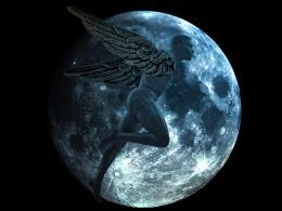 Night Dweller