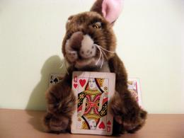 The Crazy Rabbit Has the Queen