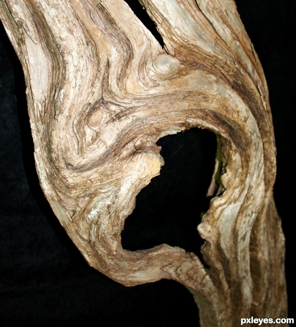 Wooden Scream