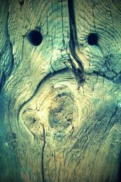 woodface