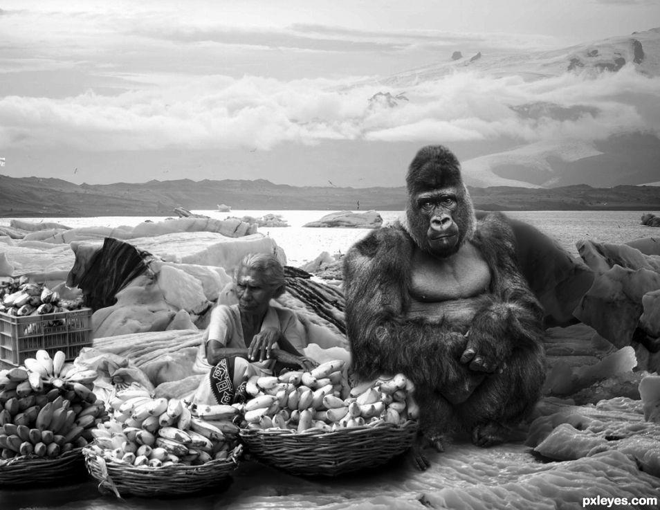 Bananas Vendors