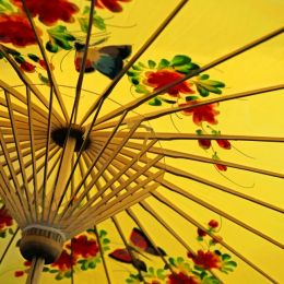 PaperParasol