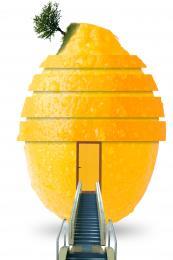 Secret of Lime