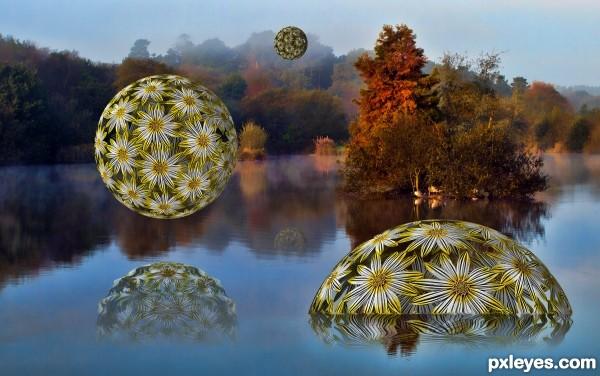 Floating Daisy Balls