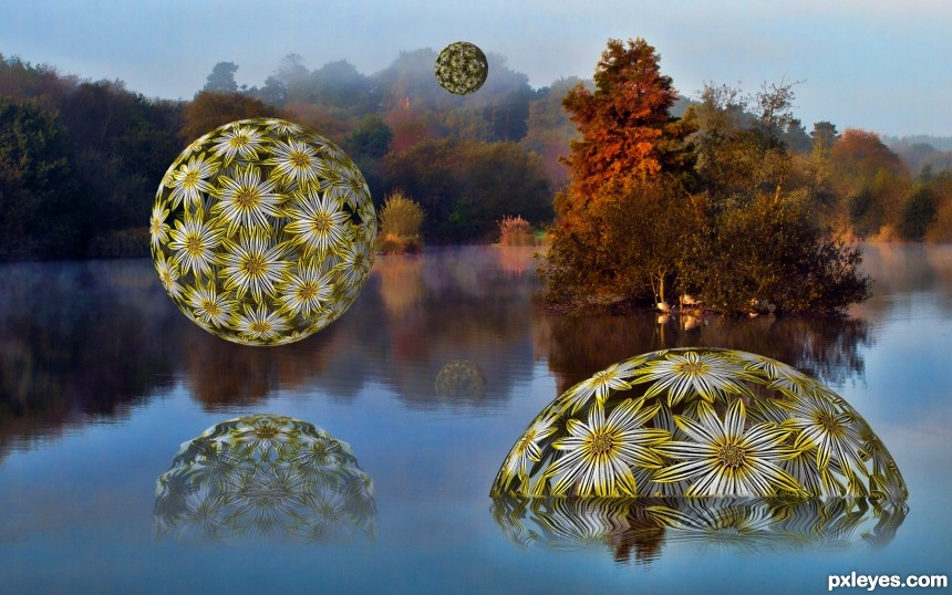 Floating Daisy Balls photoshop picture)
