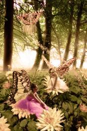 fairiesmeetingpoint