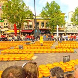 CheeseFestivalHaarlemNetherlands