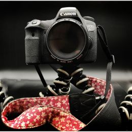 My Canon 6D Picture