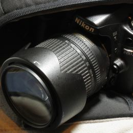 My D80 Picture