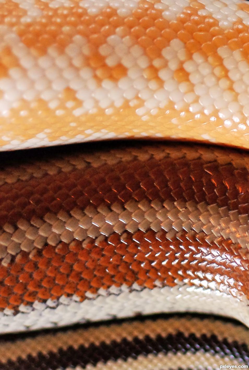 Reptile Stack