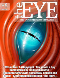 Pxleyes magazine - the eye 08