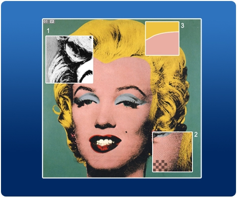 How To Create An Andy Warhol Serigraphy Effect Photoshop Tutorial