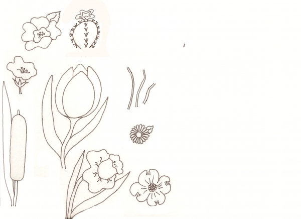 Little Flowers Drawing Flower Drawing Lessons
