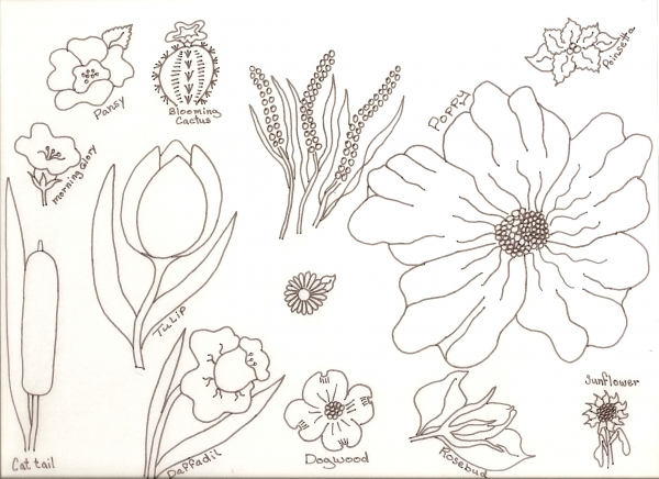 Flower Drawing Lessons
