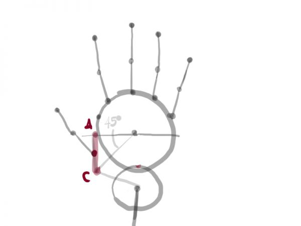 how to draw a proportioned hand structure - traditional-drawing tutorial