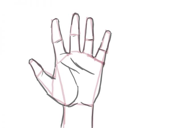 Drawing Lines On Your Wrist : How to draw a proportioned hand structure traditional