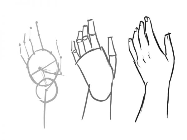 How To Draw A Proportioned Hand Structure - Traditional-Drawing ...