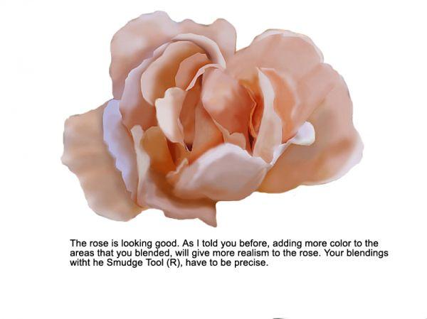 Такой букет цветов нарисовала цветы