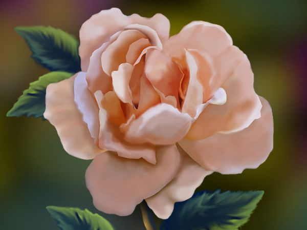 How To Make A Digital Painting Of Rose From Scratch Final Image
