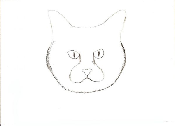 Make the bottom part of the cat face rough as if there is fur use image as your guide