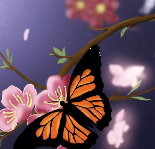 black color butterfly 2 create a new layer layer new layer then create clipping mask ctrlalt g 3 with the soft brushb size 3px - Color Butterfly 2