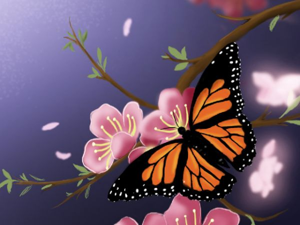 How to make a beautiful spring butterfly scenery photoshop step 34 ccuart Images