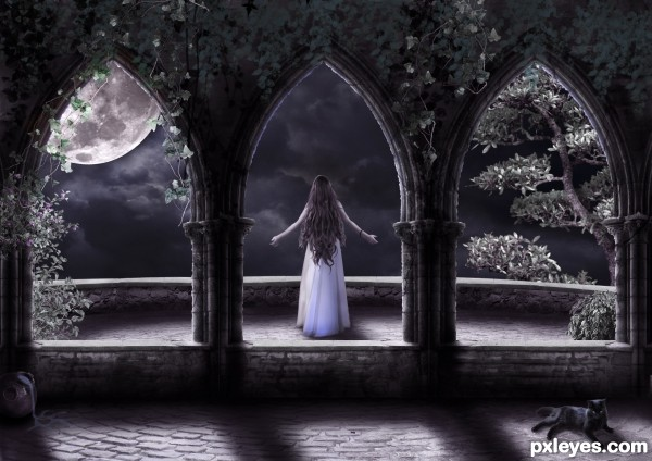 Create a Beautiful Surreal Night Photo Manipulation Final Image