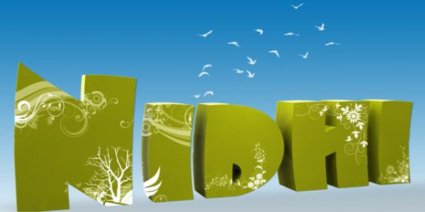 My Name 3d Wallpapers: My Friend Nidhi's 3d Name (31336) Picture By AdhirAnimator