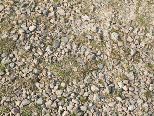 Stoney Ground Texture
