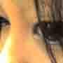 avatar kitkat671
