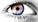 avatar mysaurav